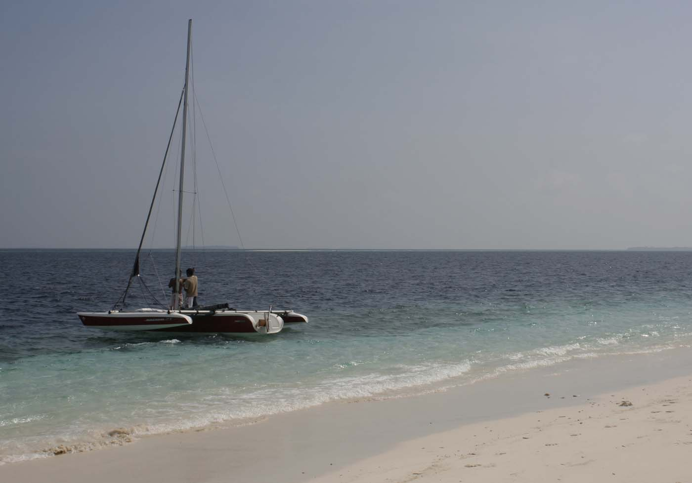 Sailing Trip With The Trimaran. Live Underwater Cameras In The Ocean